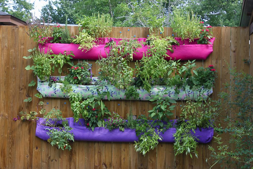 Delightful Hanging Vegetable Garden