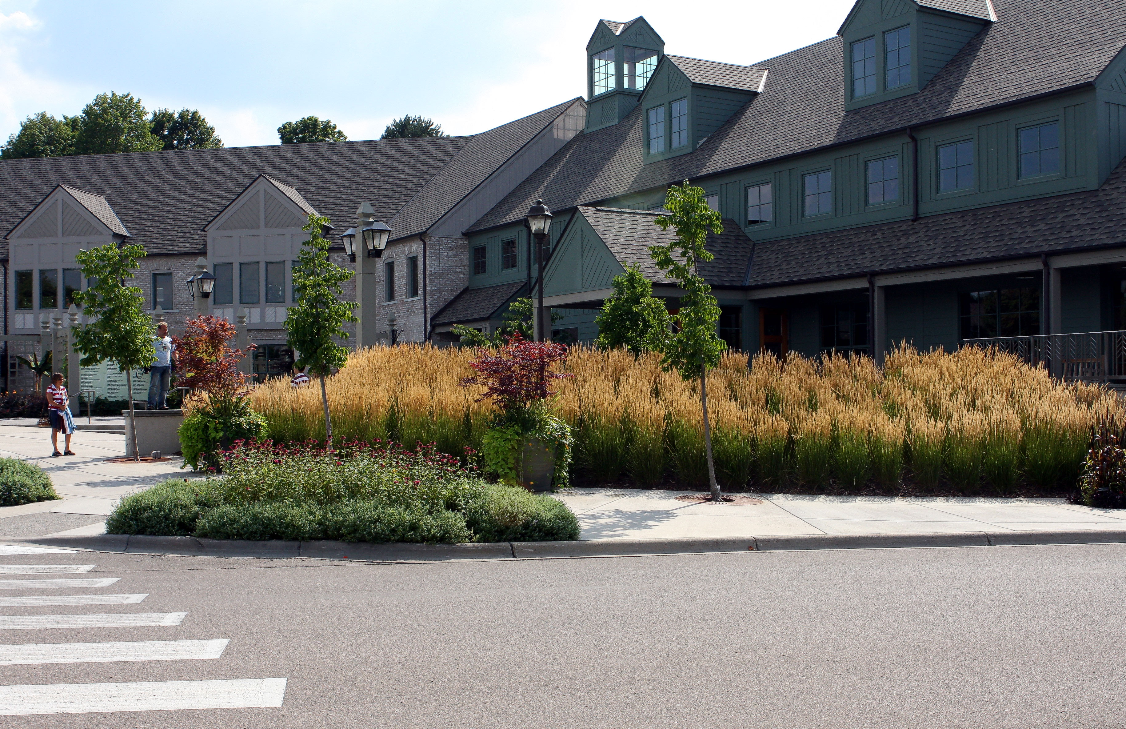 Ornamental grasses great for landscape workwithnaturefo